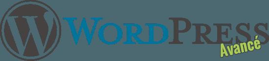 Formation WordPress avancé | Consultant formateur | Nicolas MAUHIN