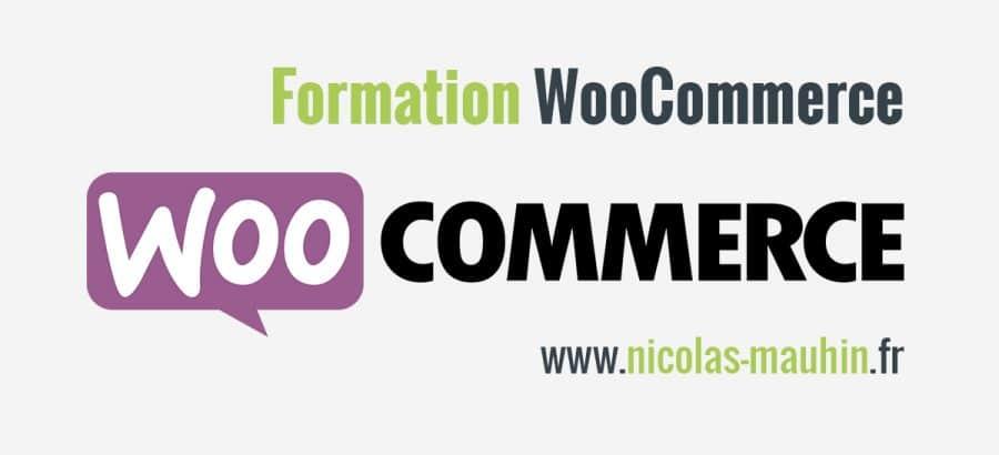 Cette formation WooCommerce va vous aider à ouvrir une boutique en ligne