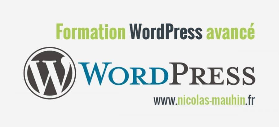 Maîtriser les fonctions avancées de WordPress